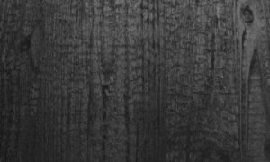 Woodline WL Carbonized Wood